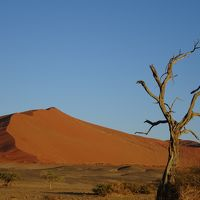 絶景を求めて、遠かった南部アフリカVol.3(ナミブ砂漠)