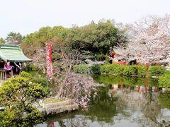 2017年京都 4月5日 その8 神泉苑の桜