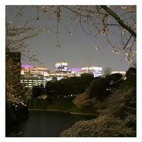 東京桜ホロホロ(散歩) 千鳥ヶ淵