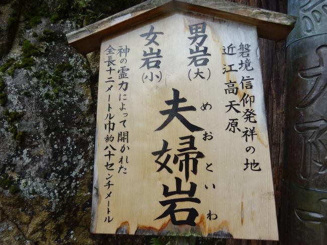 滋賀県八日市の太郎坊宮、昔から岩山を背後にしており、気になっていました。<br />今回名鉄ハイキングで太郎坊=赤前山を登るツアーがあり、参加しました。<br />名古屋出発時は天気が悪かったのですが、不思議と登山している間はほとんど雨が降らず、バスに戻ったら、雨が降り始めました。<br />また太郎坊宮の祭神はアマテラスの子供である「正哉吾勝勝速日天忍穂耳大神―マサカアカツカチハヤ ヒアメノオシホミミノオオカミ―」、通称オシホミミです。<br />このお方はアマテラスの出兵命令を受けても、2回、拒否しています。<br />1回目は出雲出兵を拒否し、タケミカヅチが出兵しました。<br />2回目は天孫降臨の時、子供のニニギに代わりに行かせました。<br />自身は高天原にいて、動かない。<br />こういう人が王になったら、どうなるでしょうか。<br />魏志倭人伝では卑弥呼亡きあと、男王がたち、国中が従わない、そのため台与が女王になったと記録しています。<br />この男王に比定できるとした場合、なぜ、祭神となったのか。また滋賀県八日市にお祭りされているのか。<br />その謎を解く登山でした。<br />表紙は夫婦岩です。<br />滋賀県屈指のパワースポットのひとつが夫婦岩でした。