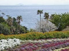 春の伊豆旅行♪ Vol.15 城ヶ崎海岸:「ニューヨークランプミュージアム&フラワーガーデン」春の花と海岸の風景♪