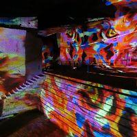 有休消化で日帰り宇都宮×古河【1】大谷地下神殿のデジタルアート