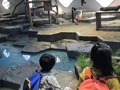 大阪 3歳,5歳子連れ 母子旅編