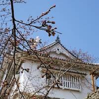 湯郷温泉と桜には少し早かった津山城