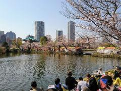 上野公園から不忍池へお花見散歩