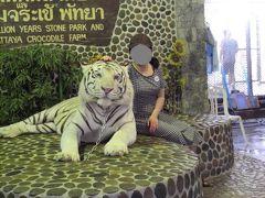 コギャルの娘たちを連れてパタヤ①♪ パタヤ クロコダイルファームで動物たちと写真。