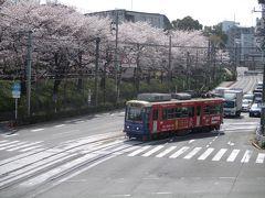 2018年3月 桜(王子、九段下)