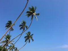 南アジア縦横断の旅(2)Sli Lanka《ヒッカドゥア。常夏ON THE BEACH》