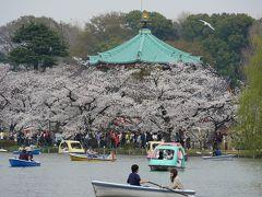 """上野公園・東京国立博物館の""""博物館でお花見を2018""""~満開の不忍池を訪れて"""
