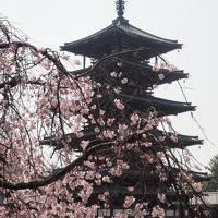 秘仏に会いに奈良へ 1泊2日の旅