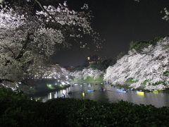 2018年3月 夜桜(千鳥ヶ淵)
