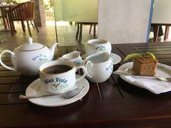 おばさん女子旅 IN スリランカ 4
