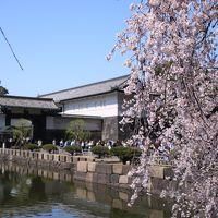 ブララブコー 「一網打尽!東京桜の名所巡り その2 〜皇居 坂下門編〜」