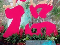 家族旅行で台北・九分(#^^#)in台湾⑨+番外編