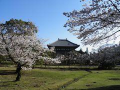 桜満開の奈良へ 2018年春