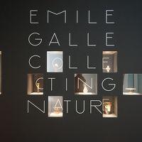 ポーラ美術館 エミール・ガレ 自然の蒐集 【1】エナメル彩の魅力・神秘の森