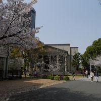 大阪で見物無料お花見と建物めぐり