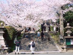 2018 玉手山の桜