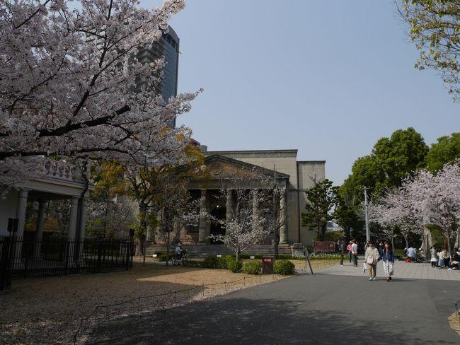 大阪城公園内にある旧陸軍施設が昨年10月からミライザ大阪城という飲食・お土産店としてオープンしたと聞き、以前から来たかったのですが、ちょうど桜満開の時期に訪れました。それから通り抜け期間ではありませんが造幣局の博物館にも行き、立派な桜を見ることができました。