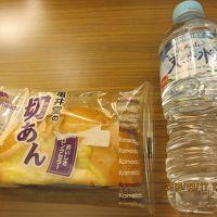山陰コンパクト旅行4/8(鳥取市内編)