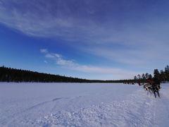 オーロラツアー in Finland(1・2日目)