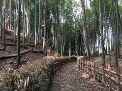 横浜ブラブラ小ネタ探し ~「続」日本百名城に選定された横浜の城、小机城址へ~