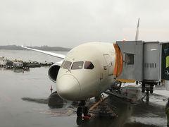 エティハド航空 ビジネスクラス 搭乗記 B787 東京→アブダビ