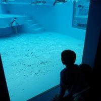 日本平動物園・ちびまる子ちゃんランド~甥っ子たちと日本平へ