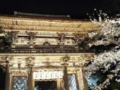夜桜~三井寺~