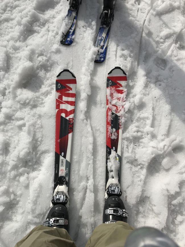表紙の写真・何年振りだろう~シリーズ(^^)<br />20数年ぶりのスキー・現在は板幅も太めになり安定感がありますね!そして短いのだ・・<br />4月1日・日曜日が最終日で、未だ雪は有るというので、下の孫を連れてダイナランドへ行ってきました。<br />娘婿が旧正月に帰省した時に行く予定でしたが、天候不順で中止してスケートに変更。<br />今年も体験させてあげられないかな~と諦めていたのですが、ようやく連れて行けて楽しめました(^-^)<br />娘は年度末で春休みでも何処も連れて行って上げれませんし、娘婿は海外単身赴任中なので、じいじ・ばあばは老体に鞭打ってピンチヒッターなんです(苦笑)<br />しばらくはじいじとばあばの出番の様です。<br />まあ、年寄りの冷や水程度の事しか出来ませんが・・<br /><br />☆スキー場・大日岳(1709m)横の山頂(1505m)から、ダイナランドスキー場と高鷲スノーパークスキー場に滑り下りてこれるようになっています。<br />色んなコースがあって楽しめるスキー場です。<br />営業最終日でしたが関西ナンバーの車も多かったです。<br /><br />☆カタクリの花・今回は土岐の日本ライン花木センター近くの里山に広がるカタクリを楽しみました。<br />2013年・3月23日・紅葉で有名な香嵐渓でカタクリの群生を旅行記にしてあります(香嵐渓の方が山全体にカタクリが広がっています)<br />時期がありますが機会がありましたら訪問されて見て下さい。<br />