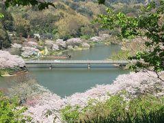 佐久間ダム湖親水公園の展望台に登って。