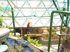 ワイルドライフドームのズーム(ケアンズ:シャングリラ宿泊・キュランダ鉄道とミコマスケイの旅4