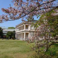 桜が散る前に弾丸日帰り花見ツアーin東京 Part4は旧岩崎邸を拝観しゆっくり庭園を歩き花見!! O(*^-^*)O