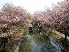 日帰り京都のバスツアーに参加して。