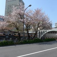 桜が散る前に弾丸日帰り花見ツアーin東京 Part5は御茶ノ水駅周辺の名所の桜花見!! O(*^-^*)O