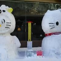 30年来の夢、流氷を見に北海道へ・・・しかし流氷は見えずしかも吹雪が来るって�