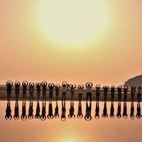 瀬戸内桜紀行1日目:紫雲出山から日本のウユニ塩湖(!?)父母ヶ浜海岸へ