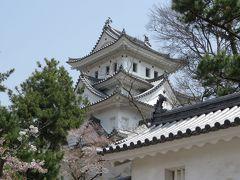 岐阜大垣・本巣のさくら・・四重天守がそびえる大垣城を訪ねます。