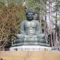 2018年3月24日:お彼岸恒例 墓参り 日本最大級の座仏 宝光寺の鹿野大仏(通称多摩大仏)