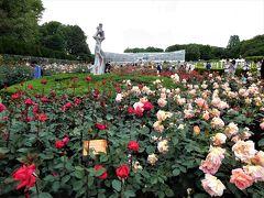 2017年5月 都立神代植物園のバラ園でたくさんのバラを見ました。