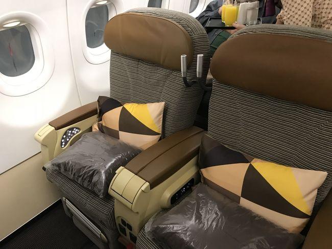 エティハド航空のビジネスクラスで成田からアブダビを経由してカイロまでのチケットを取りました。<br /><br />カイロ発券のチケットが安いとはいえ、カイロ空港のアライバルビザが約5000円、ホテル代なども考えるとエジプト滞在すると結構な出費です。<br /><br />カイロは何度か訪ねているので、そのまま乗り継いでアテネへ向かうことにしました。<br />カイロ→アテネはエジプト航空の片道チケットを予約しました。<br /><br />さて問題はエティハド航空とエジプト航空のチケットが別切りのため、バゲージを通しでアテネまで預けることができません。<br />またカイロ空港のターミナルが到着のエティハド航空がターミナル2、出発のエジプト航空がターミナル3です。もちろんアライバルビザを取得して入国して荷物を受け取りターミナル間を移動すれば問題なく乗り継げるのですが、荷物を受け取るためだけに高額のビザ代を払うのはもったいないです。<br />飛行機の遅れも考慮して乗り継ぎ時間5時間を確保。<br />入国せずに無事乗り継げるかレポートします。