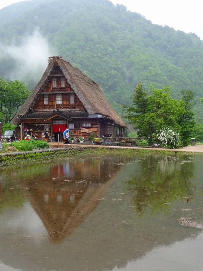 春の五箇山を訪ね古都金沢へのドライブをしました。<br /><br />何故金沢?<br /><br />それはnorisa妻のご宣託から始まりました。<br />「金沢の兼六園って行ったことがないわーー」<br /><br />なるほど、norisaが兼六園を訪れたのはン十年前の学生時代。<br /><br />あれから星移り年変わり、norisa本人もすっかり忘れていましたから一も二もなく旅行予定を立て旅立ったのでしたーーー。<br />