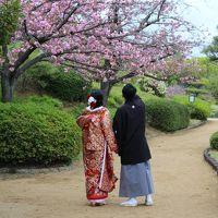 大阪LOVER♪【国立国際美術館・中之島公園・中央公会堂・堺 大仙公園(日本庭園)】