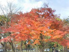 """たまには「ベタ」な観光旅行1711  「仕事仲間のマダム達と紅葉を見に行きました。  """"南禅寺&永観堂""""」  ~京都~"""