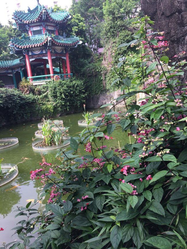 2回目の香港。<br />両親と妹と海外旅行へ行くことに。<br />最初はシンガポールへ行く予定だったけど、何とかって蚊の感染症<br />を心配して香港となりました。<br /><br />グダグダ旅行となったけど、いい経験と思い出に。<br /><br /><br /><br />往路 関空発 18:35 <br />   香港着 21:35<br /><br />復路 香港発 11:30<br />   関空着 16:20<br /><br />航空券(キャセイパシフィック航空)<br />ホテル(Park Hotel)       ¥246,673(4人分) \61,669/人<br />機内持ち込み手荷物7kg<br />受託手荷物 20kg