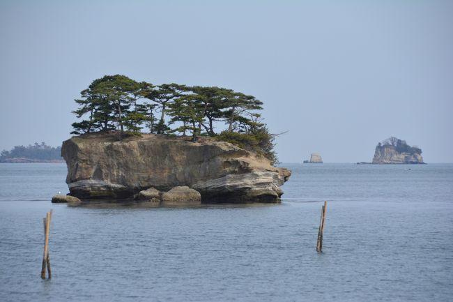 なんだか今月も島に行きたくなったので、今度は東北の離島へ。<br /><br />東京から日帰りで、宮城県は松島湾に浮かぶ浦戸諸島の桂島(かつらしま)、野々島(ののしま)、寒風沢島(さぶさわじま)、朴島(ほうじま)をめぐってきました。<br /><br />これと言って目立つ観光名所はありませんが、どの島もとっても長閑で癒されました。<br /><br />