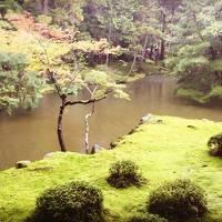 京都のんびり1泊2日*苔寺*嵐山*1人旅
