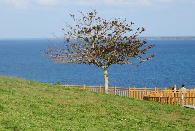 沖縄の名城巡りの締め括りです。最後に見学した首里城とも関係が深い『斎場御嶽(セイファウタキ)』の見学の後、歩いてやって来た知念岬です。聖なる島とされる久高島に面した岬でした。