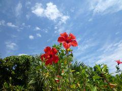 うりずんの石垣島へ その1(野底マーペー山頂からの360度絶景)