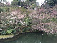椿山荘で桜アフタヌーンティー